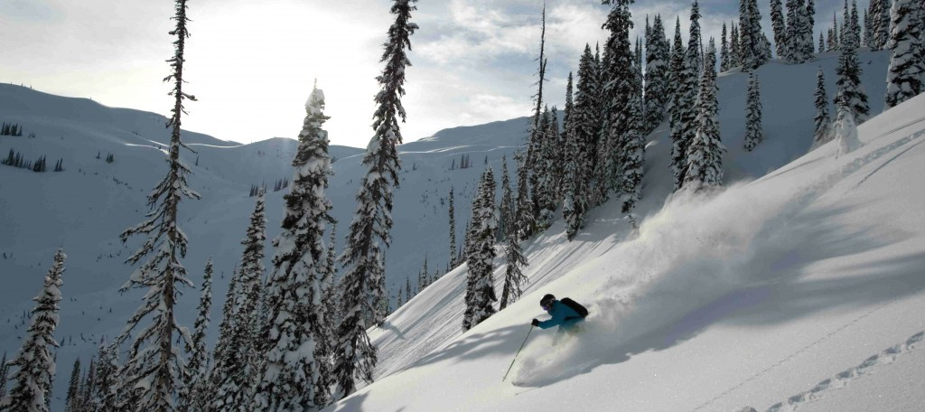 Powder snow and exciting terrain in Revelstoke
