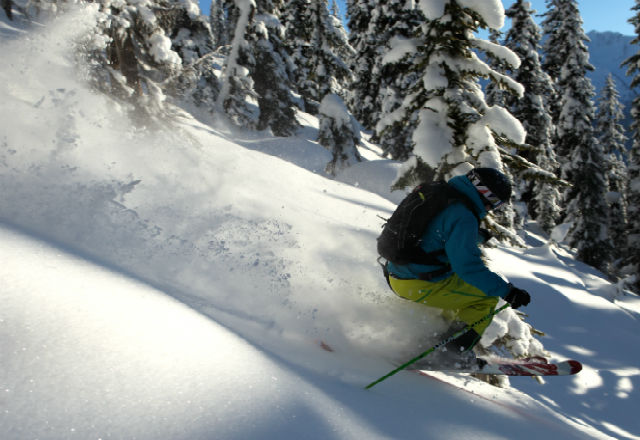 The world's best tree skiing in Revelstoke